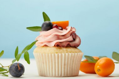 cupcake with cream, grapes and kumquats on white surface isolated on blue