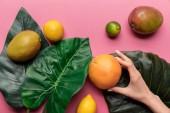 oříznutý pohled na ženu, která drží grapefruitu poblíž celého zralého tropického ovoce se zelenými listy na růžovém pozadí