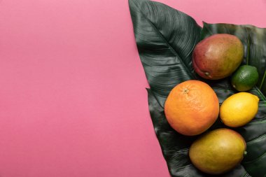 top view of whole ripe tropical citrus fruits and mango on green leaves on pink background with copy space