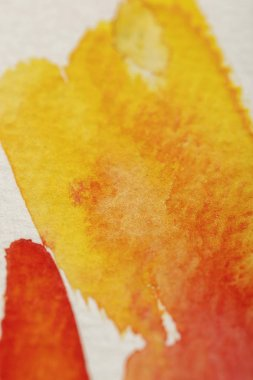 close up view of yellow, red watercolor paint colorful spills on white background