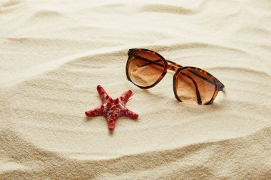 brown stylish sunglasses on sand with red starfish
