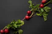 whole nutritious tasty radish with green leaves on black background