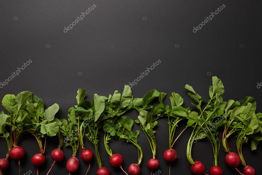 top view of fresh radish on black background with copy space
