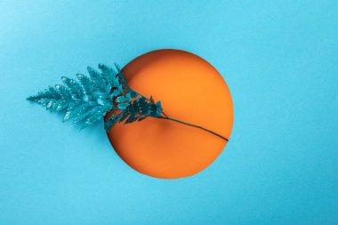 blue fern leaf in orange round hole on blue paper