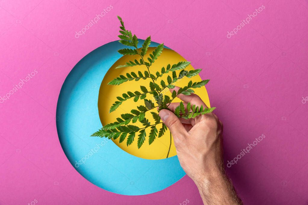 Cropped view of make hand holding fern leaf on colorful paper with circles stock vector