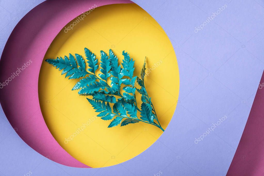 Green fern leaf on geometric colorful paper background stock vector