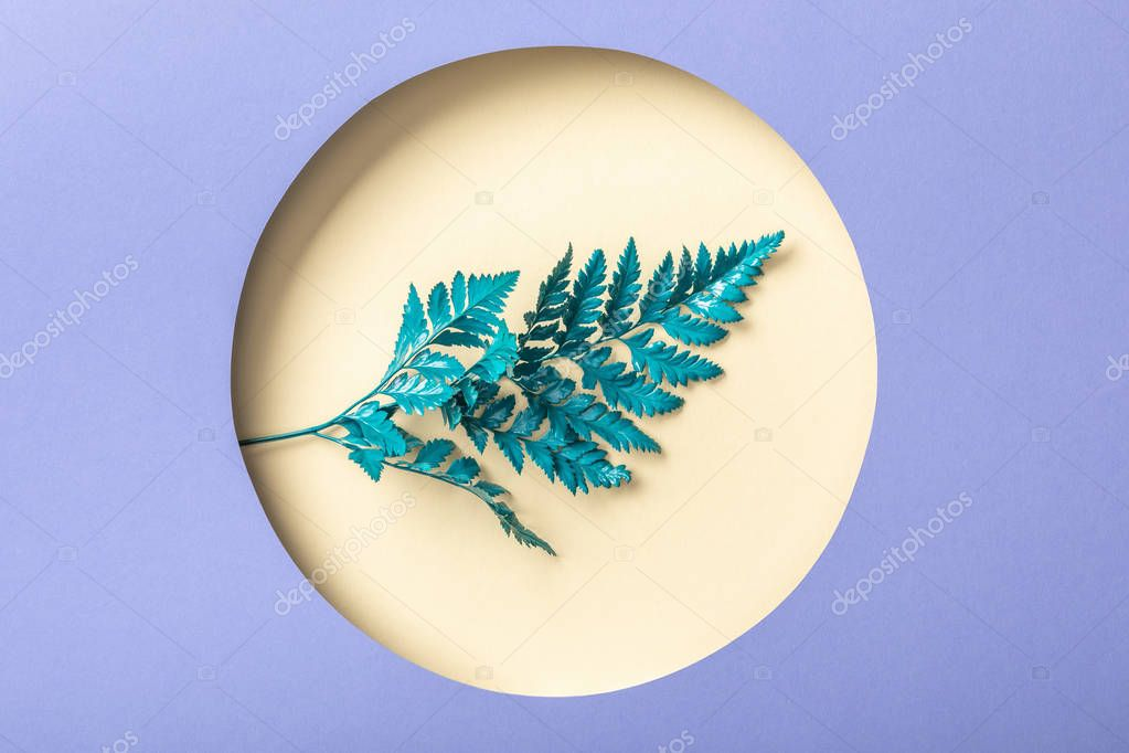 Decorative fern leaf in round beige hole on purple paper stock vector