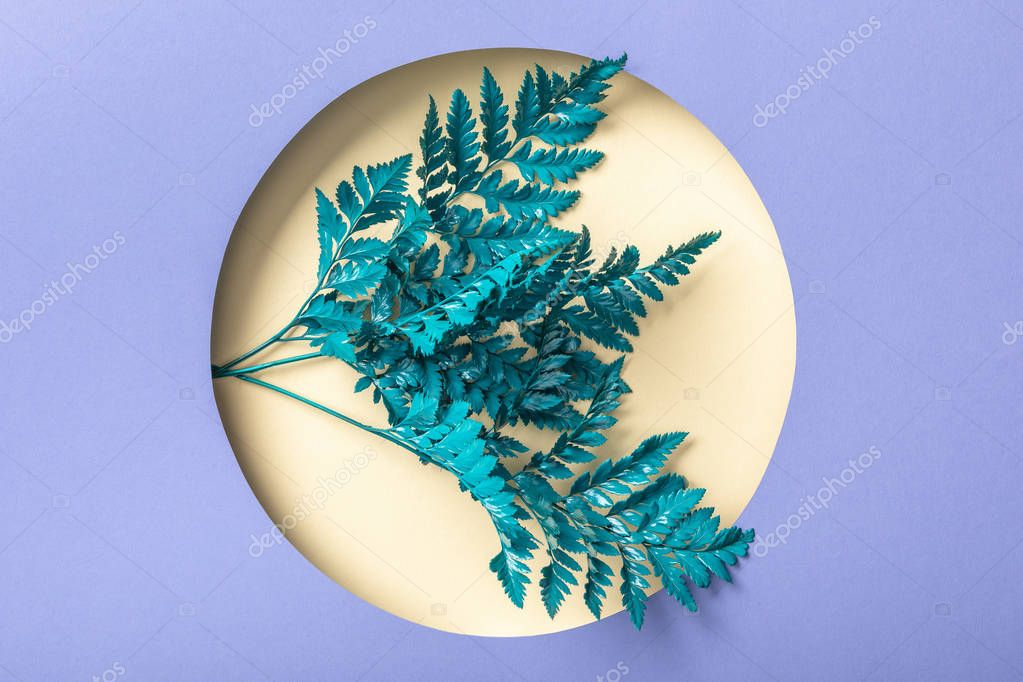 blue decorative fern leaves in hole on purple paper