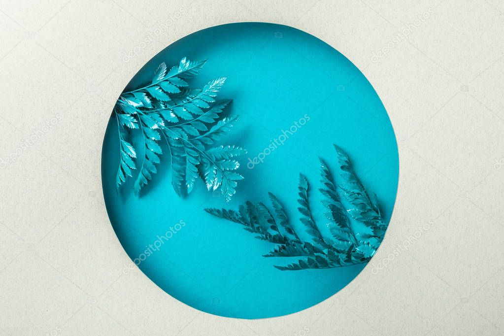 Blue decorative fern leaves in round hole on white paper stock vector
