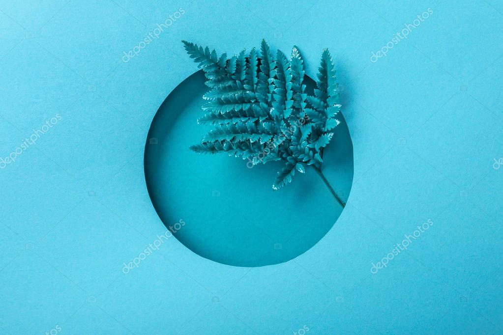Blue fern leaf in round hole on blue paper stock vector