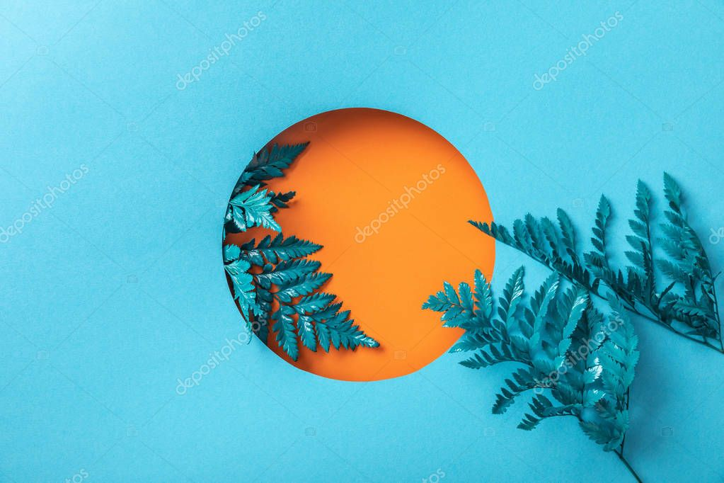 Blue fern leaves in orange hole on blue paper stock vector