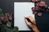 Ausgeschnittene Ansicht eines Mannes, der mit Füllfederhalter auf Papier schreibt, auf Schwarz mit Eukalyptuszweigen