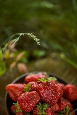 selective focus of fresh red strawberries in bowl on grass