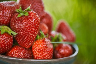 close up of fresh red strawberries in bowl