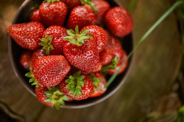 top view of fresh strawberries in bowl on stump