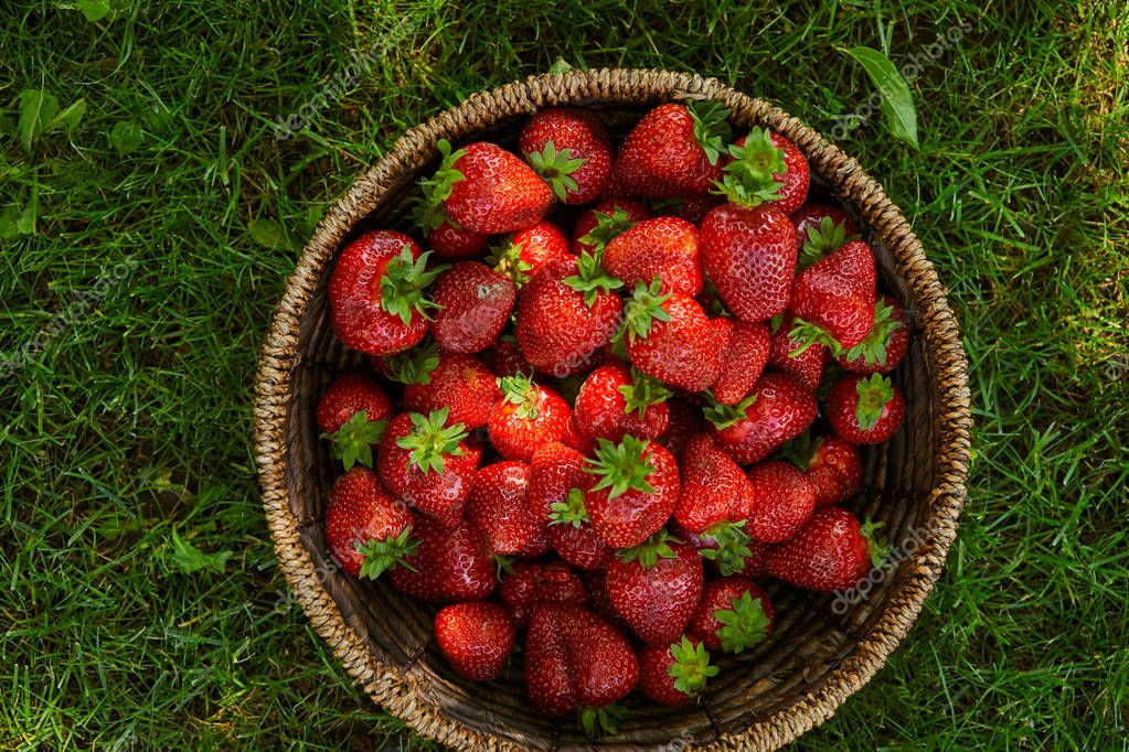 top view of red strawberries in wicker basket on green grass