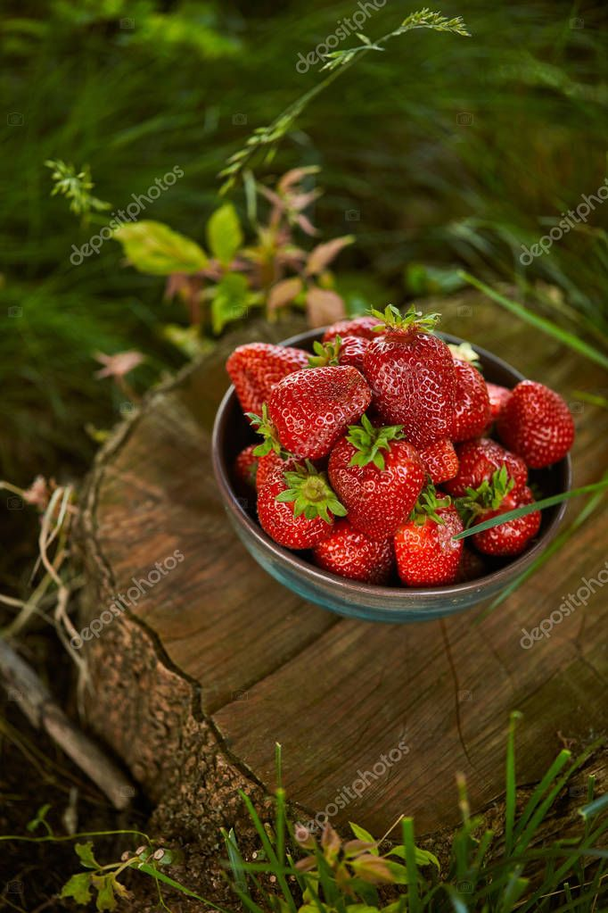 sweet organic strawberries in bowl on stump