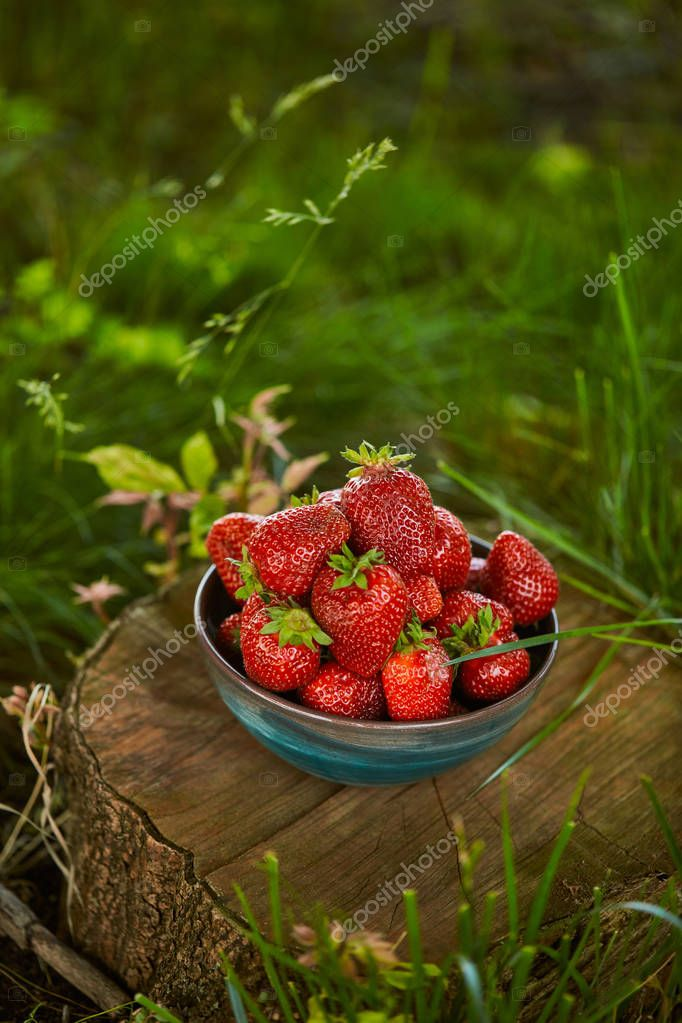 fresh organic strawberries in bowl on stump