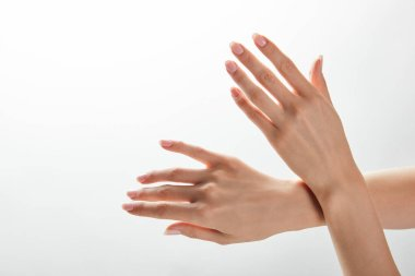 cropped view of woman hands isolated on white