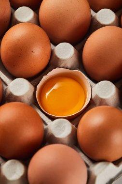 Selective focus of broken eggshell with yellow yolk near eggs in carton box stock vector