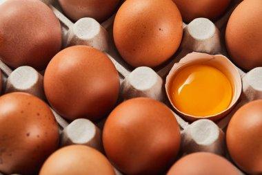 Broken eggshell with yellow yolk near eggs in carton box stock vector