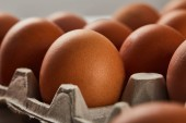 selective focus of chicken eggs in carton box