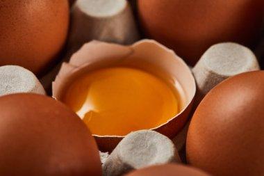 Close up view of broken eggshell with yellow yolk near eggs in carton box stock vector