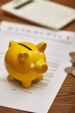 selective focus of yellow piggy bank on bankruptcy form