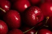 zblízka pohled na červené chutě a čerstvé třešně a kapky vody