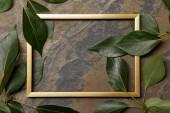 leerer goldener Rahmen auf Steinhintergrund mit Kopierraum und grünen Blättern