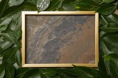 leerer goldener Rahmen auf Steinhintergrund mit Kopierraum und nassen grünen Blättern