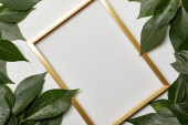 Fotografie leerer goldener Rahmen mit Kopierraum und grünen Blättern isoliert auf weiß