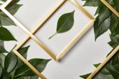 leere goldene Rahmen auf weißem Hintergrund mit Kopierraum und Blättern