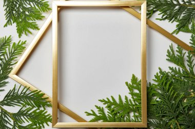 top view of empty golden frames on white background with copy space and fern green leaves