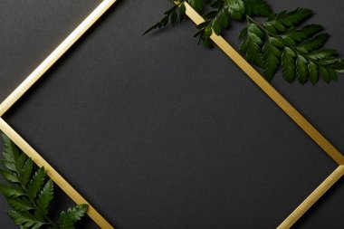 top view of empty golden frame on black background with copy space and fern leaves