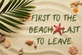 Fotografie pohled na zelený Palmový list poblíž červeného hvězdě a mušlí na písečné pláži, první k pláži, poslední k odchodu
