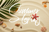 top view of green palm leaf near red starfish and seashells on sandy beach with summer illustration