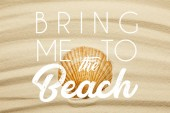 orange seashell on curve sandy beach in summertime with bring me to the beach illustration