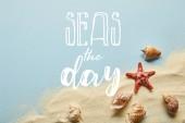 Fotografie pohled na písek s mušlí a hvězdými rybami na modrém pozadí s mořem denní
