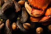 Nahaufnahme von ungekochten Krabben, Herzmuscheln und Miesmuscheln mit Grün auf Steinen isoliert auf schwarz