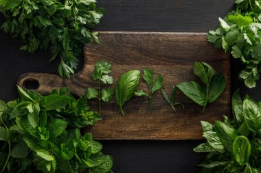 Top view of brown wooden cutting board with parsley, basil, cilantro and peppermint leaves near bundles of greenery on dark surface