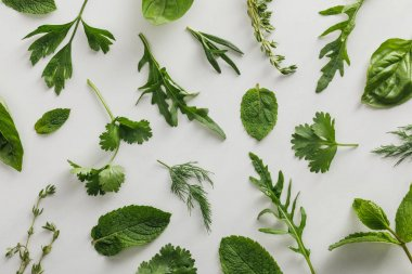 Top view of arugula, basil, cilantro, dill, parsley, rosemary and thyme twigs on white background