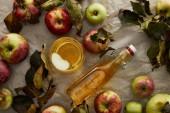 felülnézet üveg és üveg almabor közelében alma és ág levelek