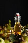 Fotografie bottle and glass of fresh cider near ripe apples isolated on black