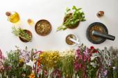 pohled na minomety a pestry s bylinnými směsmi v blízkosti květin a lahví na bílém pozadí