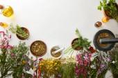 pohled na minomety a pestry s bylinnými prolnutími v blízkosti květin na bílém pozadí