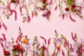 gallyakból a vadvirágok a rózsaszín háttér másolási tér