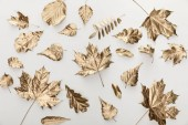 top view of golden autumnal leaves on white background