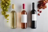 felső nézet palack fehér, rózsa és vörösbor közelében szőlő fehér háttér