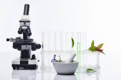 Fotografia glass test tubes, mortar with pestle near plants and microscope isolated on white